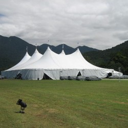 White Alpine tents