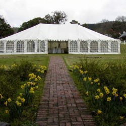 white peg and pole tents with windows